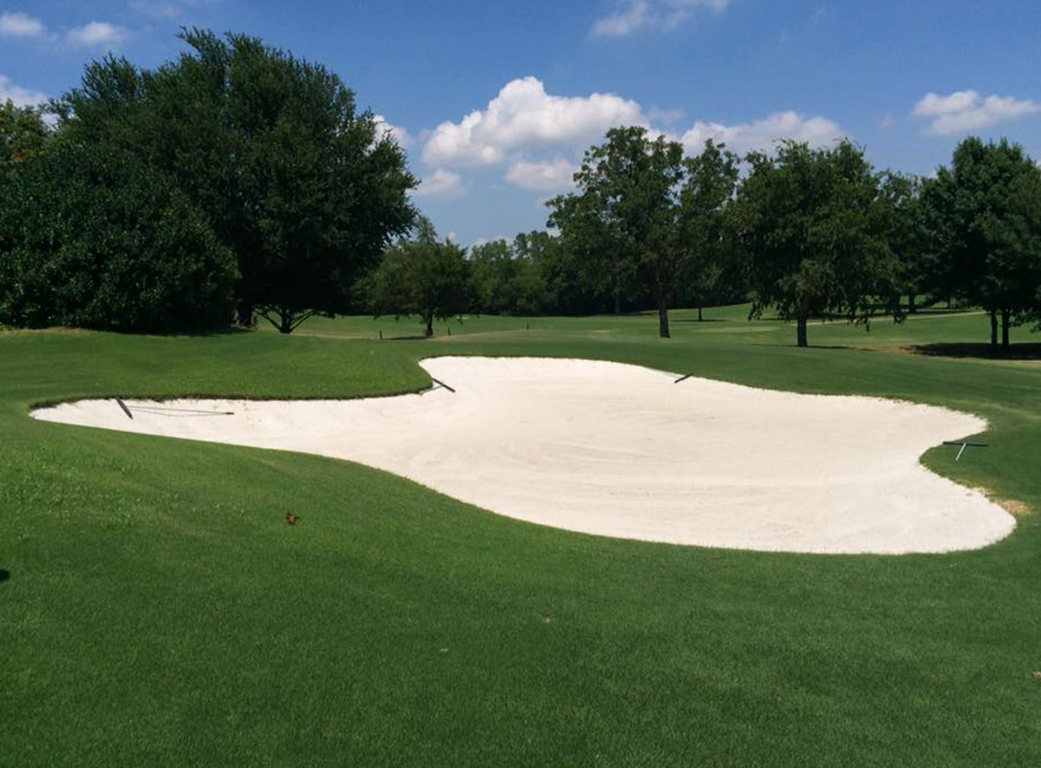 sand trap at grapevine municipal golf course