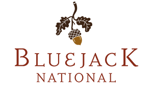 bluejack national branding