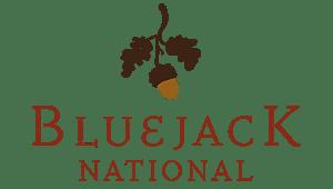 bluejack national branding