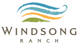 windsong ranch branding